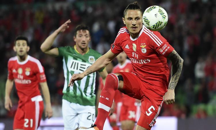 Corvino chiede Fejsa in prestito: no del Benfica, ma non è finita qui