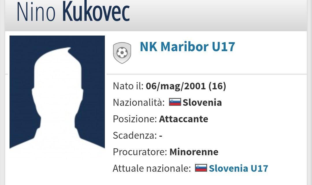 Dalla Slovenia, la Fiorentina vuole l'attaccante classe 2001 Kukovec, Corvino offre 1 milione di euro per acquistarlo
